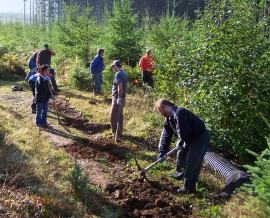 Volunteers clear brush on a trail in Capitol State Forest. Photo/ DNR.