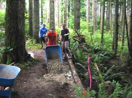 Photos of volunteers doing trail work.