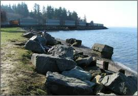 Bellingham Marine Park before