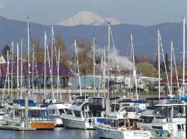 Bellingham Marina