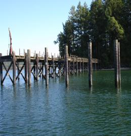Squaxin Island dock before removal