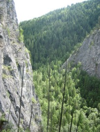 Sheer-faced limestone cliffs of the proposed Trombetta Canyon preserve support rare plants. Photo: DNR