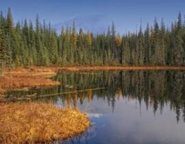 Huff Lake fen, Pend Oreille County