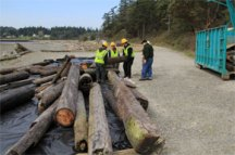 DNR staff and WCC crews stacking creosote debris at staging area.