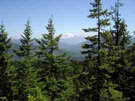 Mount Baker seen from upper 'core area' of Blanchard Forest.