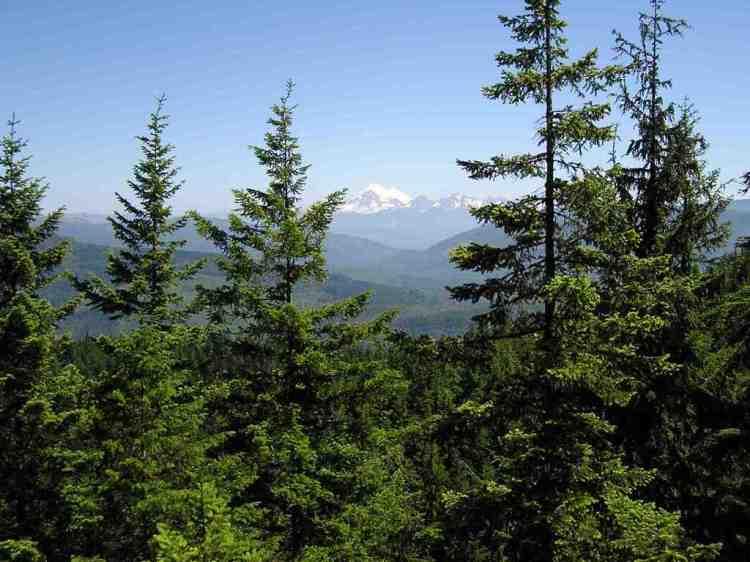 Mount Baker seen from Blanchard Forest