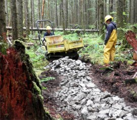 Washington Conservation Crews (WCC) lay a base layer of rock on a single track trail at Reiter Foothills. This rock layer provides a stable base that minimizes erosion on trails. Photo: Sue Jensen, DNR.