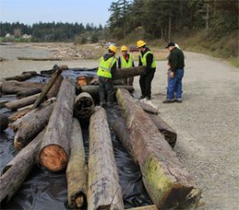 WCC Puget Sound Corps crews at Indian Island