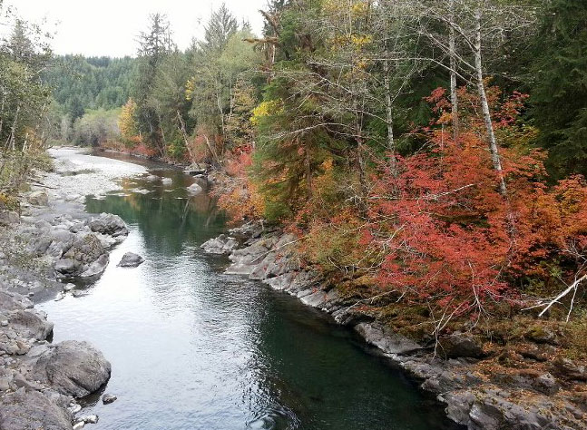 Fall in love with dnr recreation ear to the ground by for Hoh river fishing