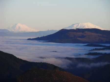 Mount Adams and Mount St. Helens