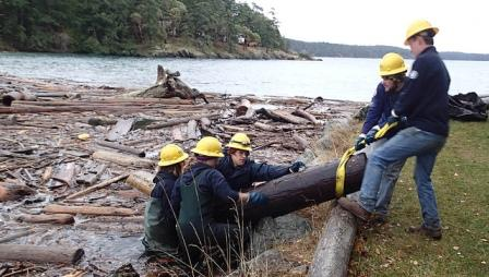 Members of the Puget SoundCorps wrestle a creosote-treated log from a lagoon at Neck Point on Shaw Islandon a chilly December day..