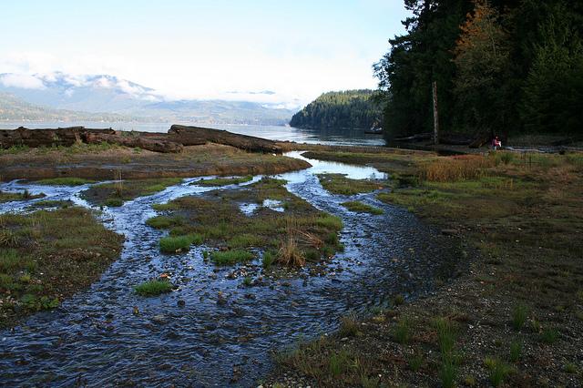 Stavis Creek