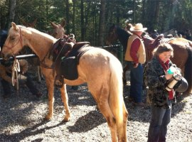 A horse and rider take a break after spending the morning clearing trails at Blanchard Mountain.