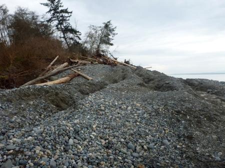 Whidbey Island landslide