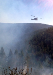 helicopter fighting fire in Capitol State Forest