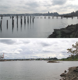 2 photos: one of West Bay with creosote pilings; one of West Bay after pilings were removed.