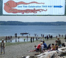 Photo of people on the beach near Pt. Robinson at the 2012 Vashon-Maury Island Low Tide Celebration