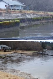 Two photos showing before and after shots of bulkhead removal in Case Inlet.