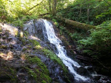 Mima Falls-Mima Falls Trail