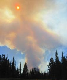 Conrad Lake Fire