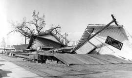 Aftermath of the Columbus Day Storm of 1962