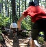 TigerMtnBike trail