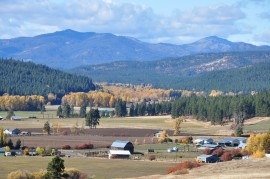 Teanaway Community Forest