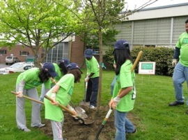 Kids plant a tree to celebrate Arbor Day.