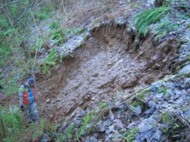 Image of a shallow landslide that initiated during a prolonged and intense rain event in Thurston County. (Image Courtesy of Stephen Slaughter, DNR)