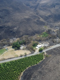 Wildfire can come awfully close to your home so become Firewise before it hits your community. Photo: DNR