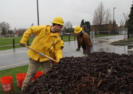 Greg Dunbar and Kasey Lambert shovel mulch for young trees in Puyallup to reduce competition from weeds. PHOTO: Janet Pearce/DNR