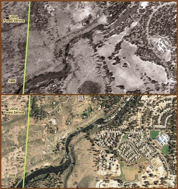 Aerial photographs from 1995 (upper photo) and 2006 document the increased number of private structures -- most residential--on private lands near this unidentified section of National Forest