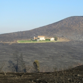Do you think 'Firewise' principles don't defend your home against wildfires? Think again!