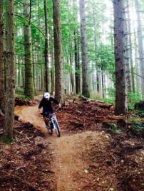Off-the-Grid Trail in Tiger Mountain State Forest.