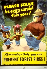 Happy 70th Birthday Smokey Bear