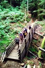 West Tiger Mountain NRCA bridge