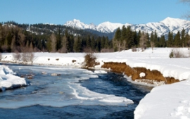 A snowy river in the Teanaway Community Forest