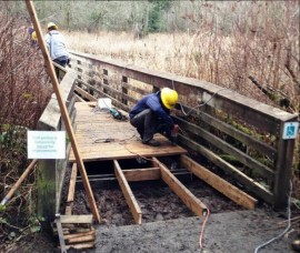 McLane Creek Washington Conservation Corps
