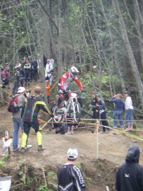 A downhill mountain biker races at Dry Hill.
