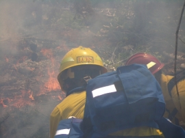 Firefighters are constantly on the look out to stay save when they battle a wildfire.  Photo DNR