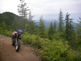 Sadie Creek, near Port Angeles, offers off-road vehicle riding opportunities. Photo/DNR.