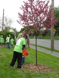 Tree Doctors can come in all ages. Photo DNR