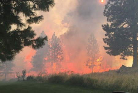 Coulee Hite fire i