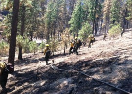 Washington Conservation Corps wildfire efforts
