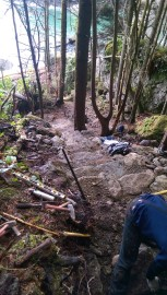 A series of rock steps on the Cove Trail that lead to a rocky cove. Photo/ DNR.