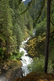 The recreation planning includes some of the Nooksack River. Photo by Patrick McNally.