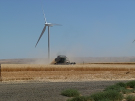 TUrbine-and-wheat
