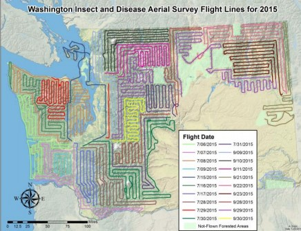Washington insect and disease aerial survey flight lines for 2015. Map by Aleksandar Dozic, DNR