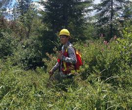 Sam Woodson, DNR intern