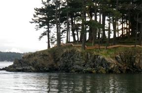 Cypress Island